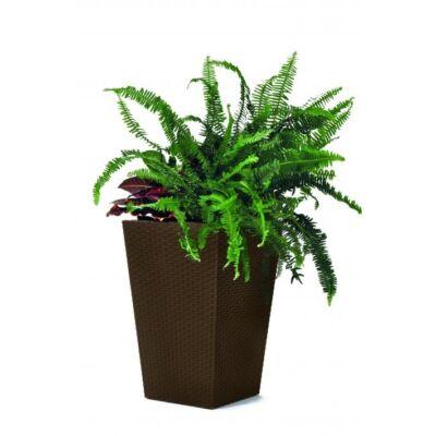 2 db Sötétbarna Curver Rattan planter S virágtartó