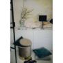 Kép 2/18 - Párna, bársony anyag világosszürke, 45x45, ALITA TYP 12
