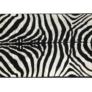Kép 1/10 - Szőnyeg minta zebra 200x250 ARWEN