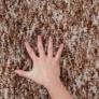 Kép 5/11 - Szőnyeg, világosbarna melír, 140x200, TOBY