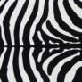 Kép 9/10 - Szőnyeg, minta zebra, 200x250, ARWEN